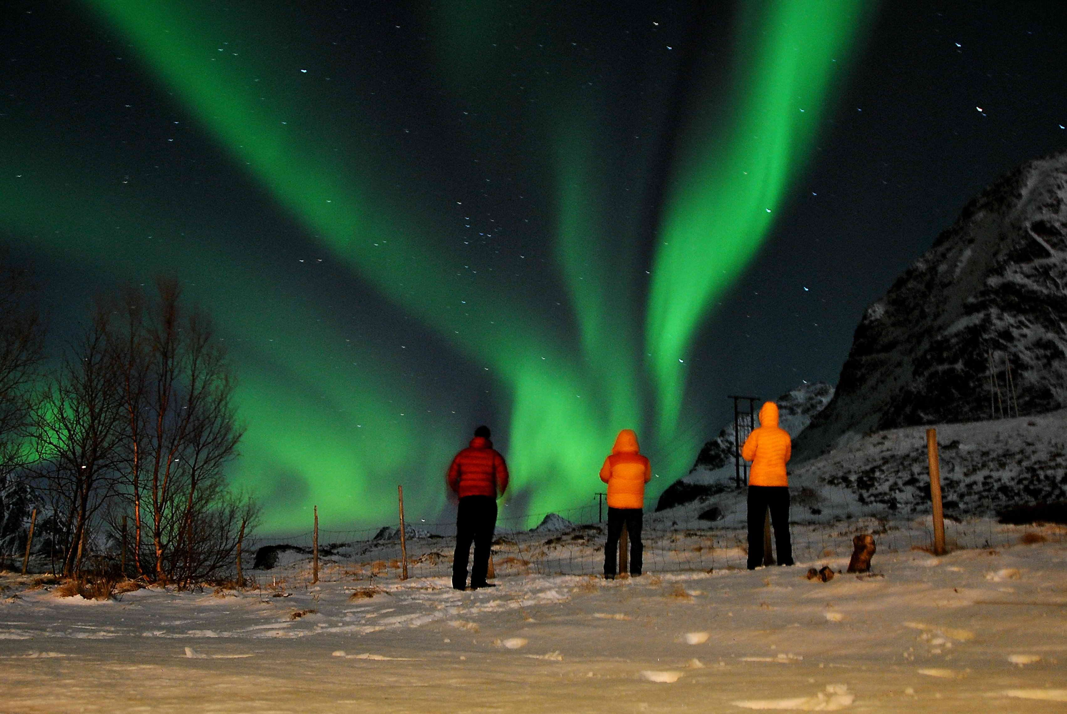 Northern Lights Tour - Northern Explorer