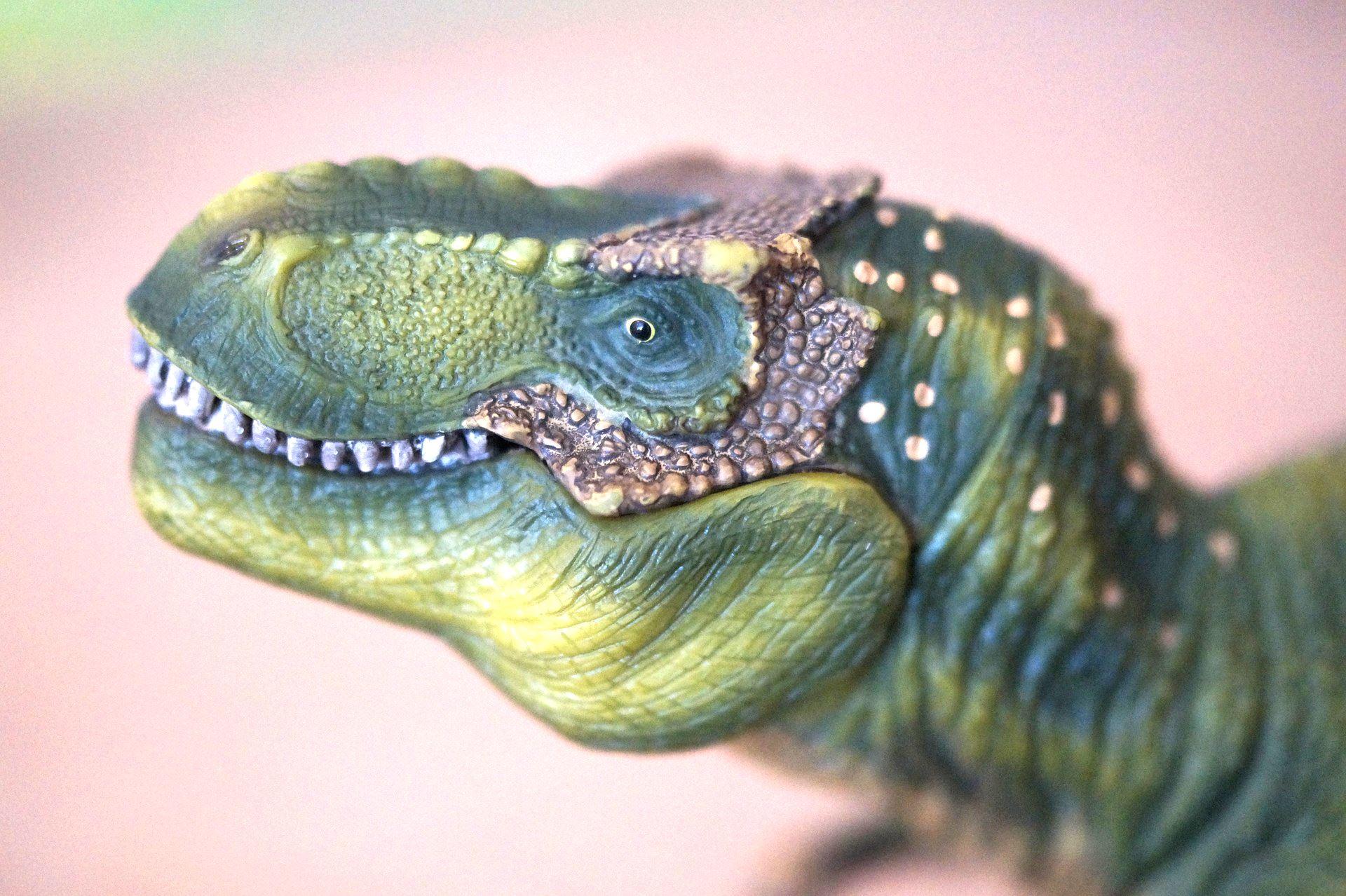 Pixabay.com, cc, Vi läser böcker om dinosaurier tillsammans