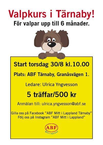 Valpkurs i Tärnaby