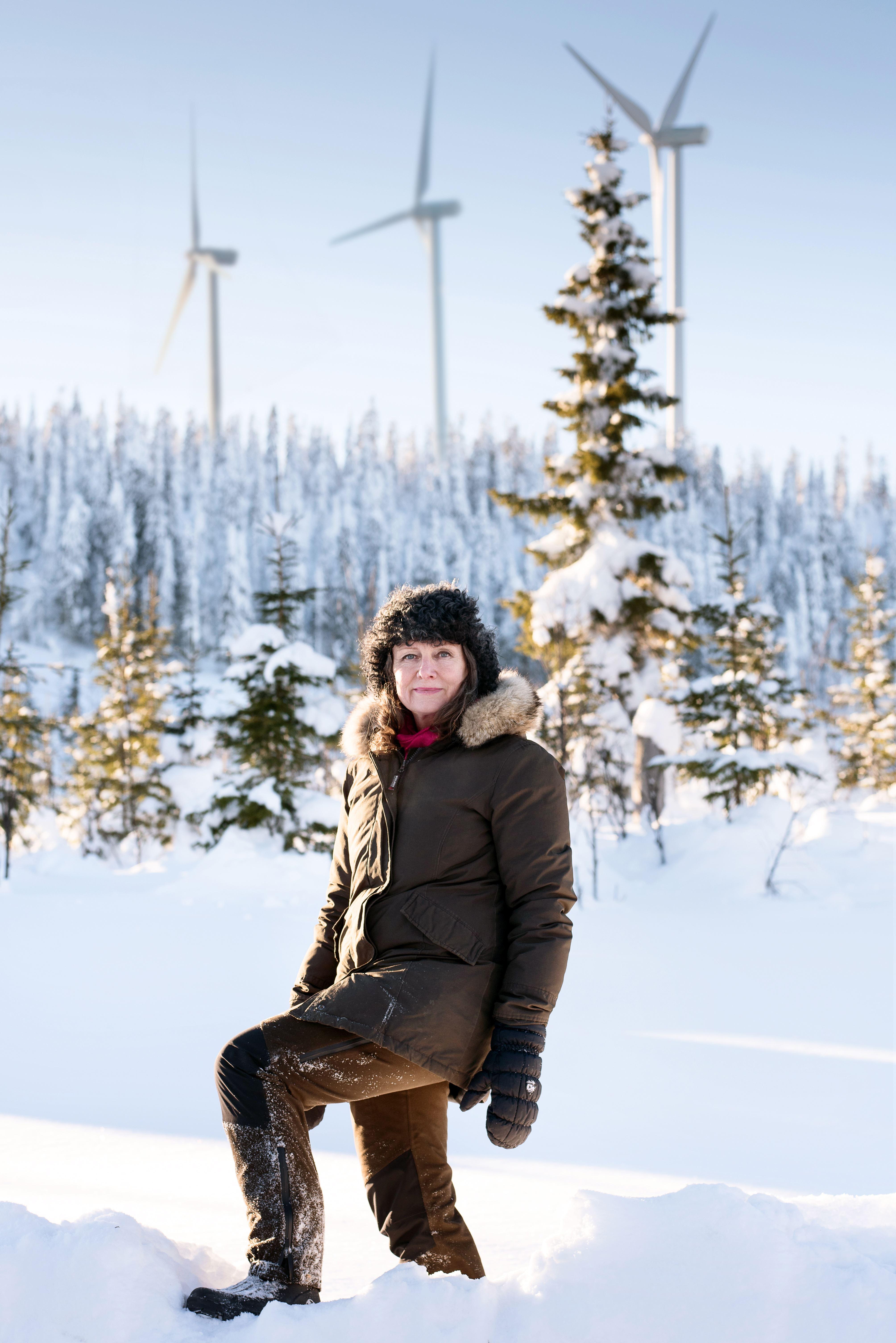 Öppen föreläsning på Sjöfartshögskolan: Vindkraft – basen i ett 100 % förnybart elsystem