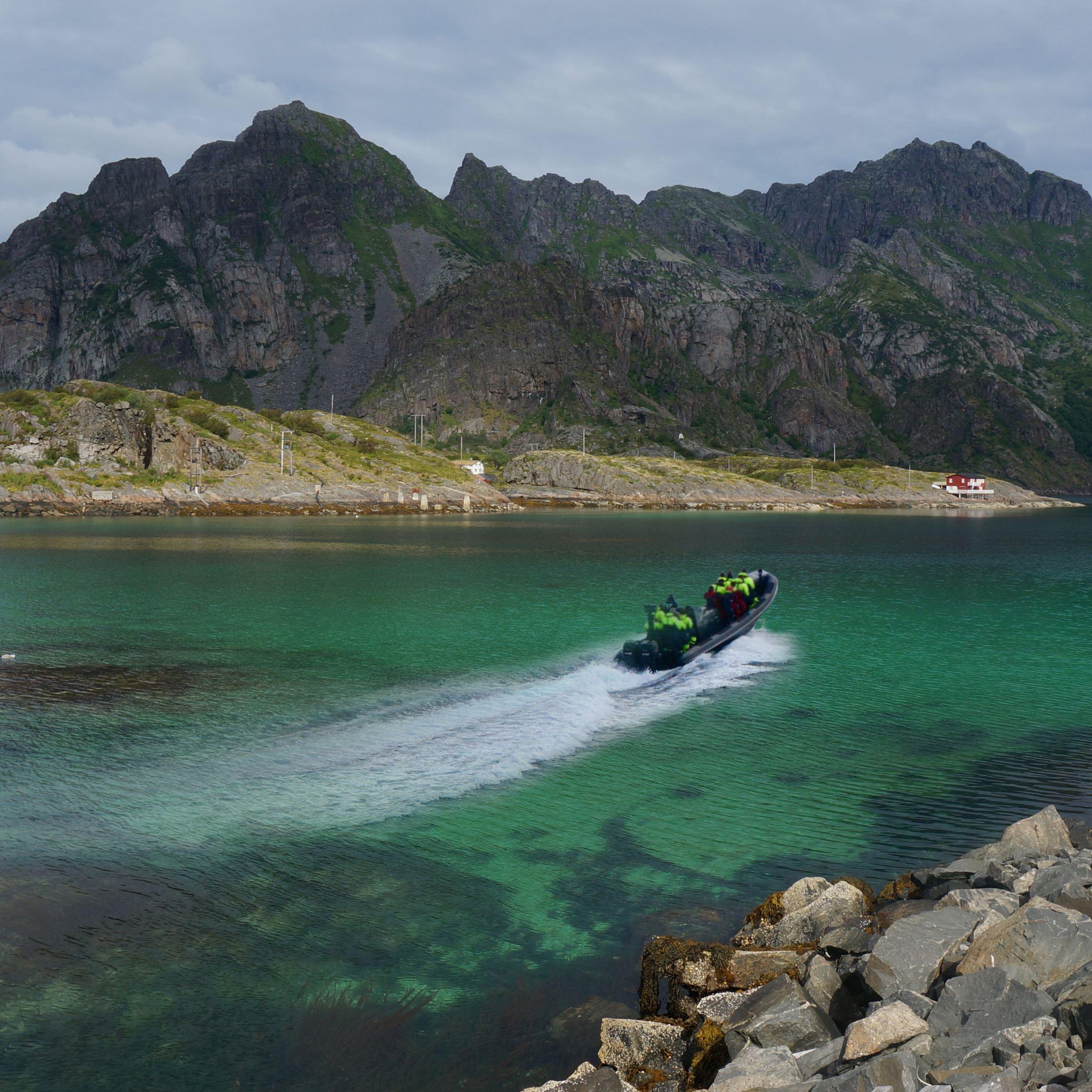 Sea eagle safari to Trollfjorden - Go2Lofoten