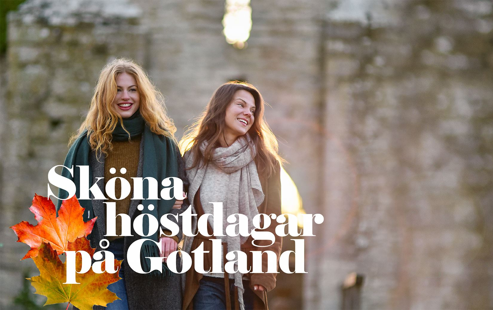 Autumn Special On The Island Of Gotland