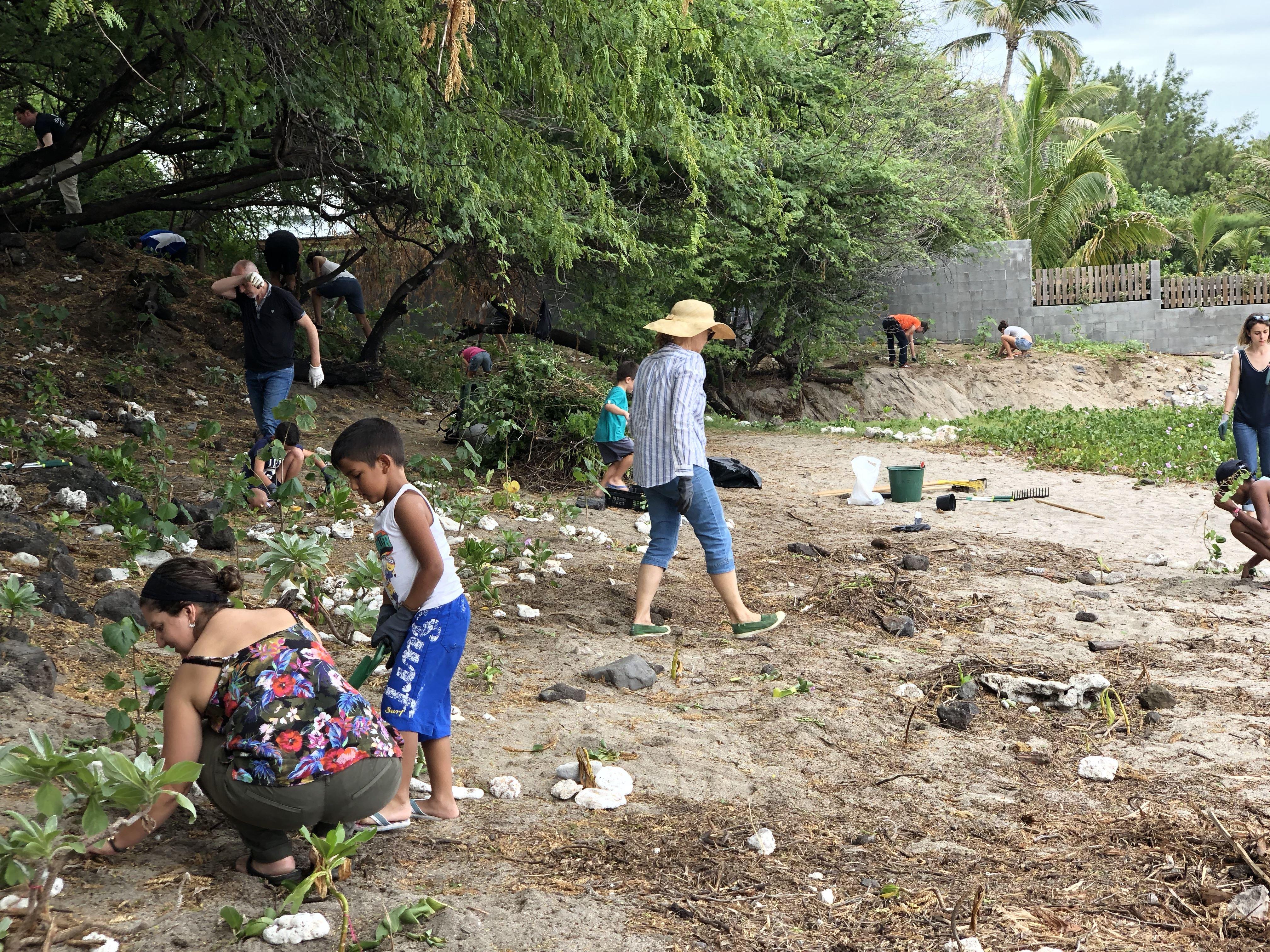 Zarlor (Thematische Entdeckung eines Schatzes des Westens der Insel) - Spaziergang am Strand in der verbotenen Schlucht