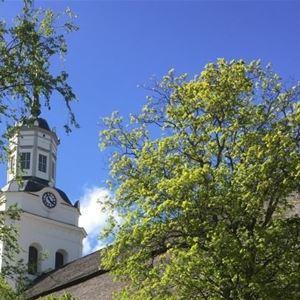 Kyrktornet med träd Orsa kyrka.