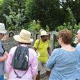Kultur-Tour von Clovis: von Boucan Laleu nach Kartié 3 Lettres