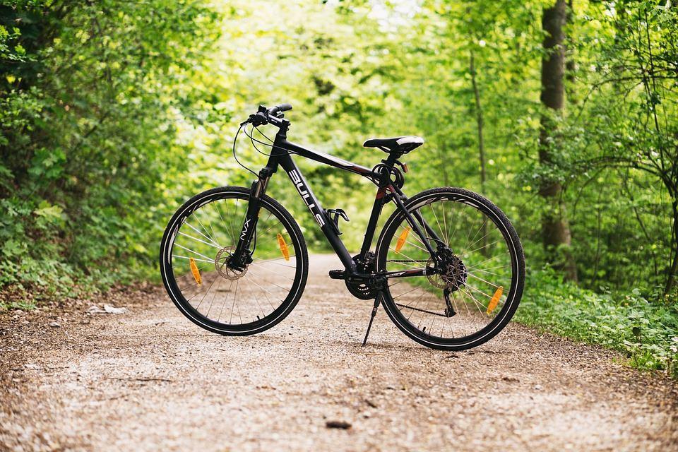 Bike rental: Smålandscykel