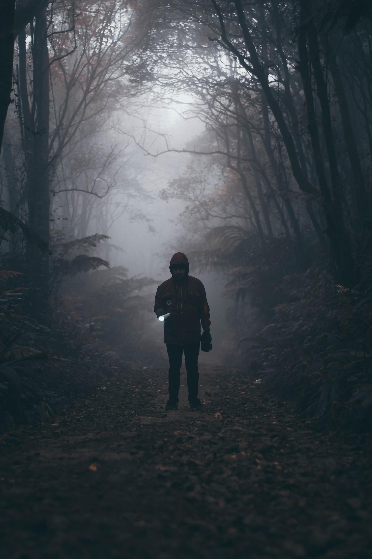 Spöknatt i Djurparken Specialpris