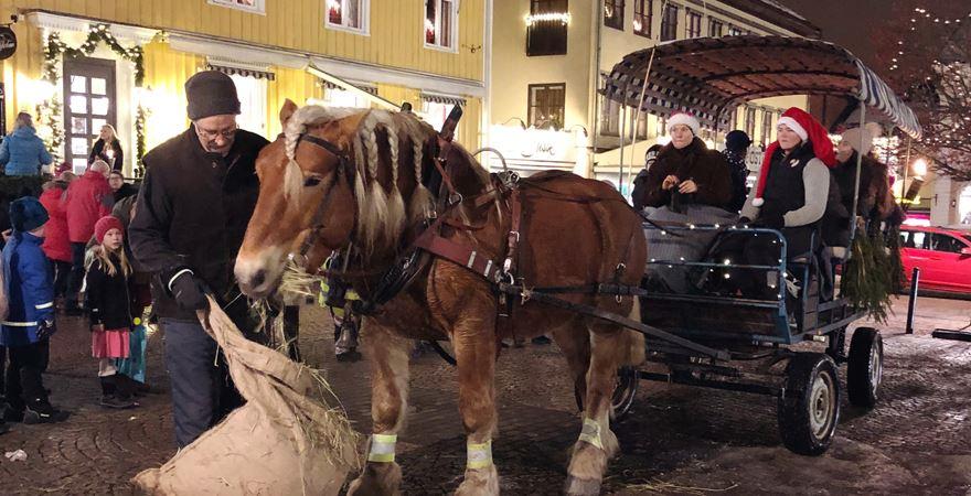 Hästskjuts vid julmarknaden på Vimmerby torg och på Astrid Lindgrens Näs