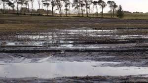 11 Torsdage på Lolland Falster - Dræns betydning for dyrkning af korn og roer