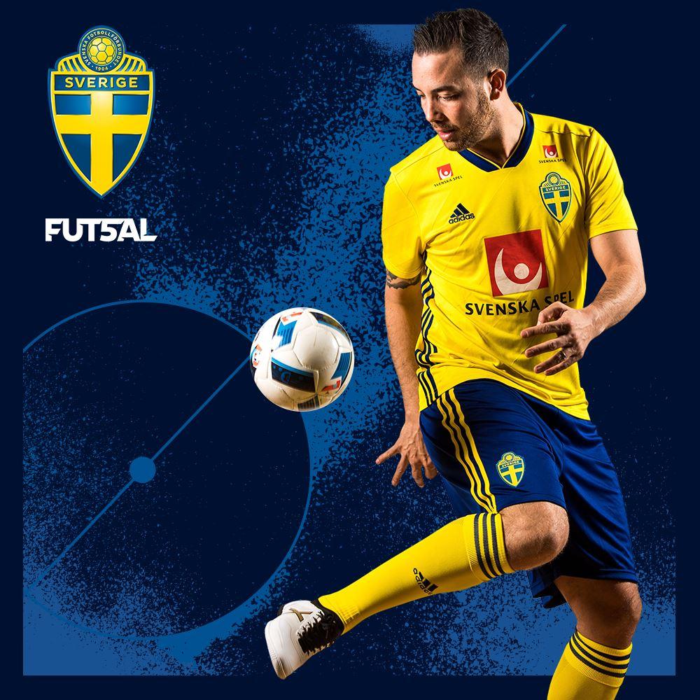 Sverige - Frankrike i dubbellandskamp en match