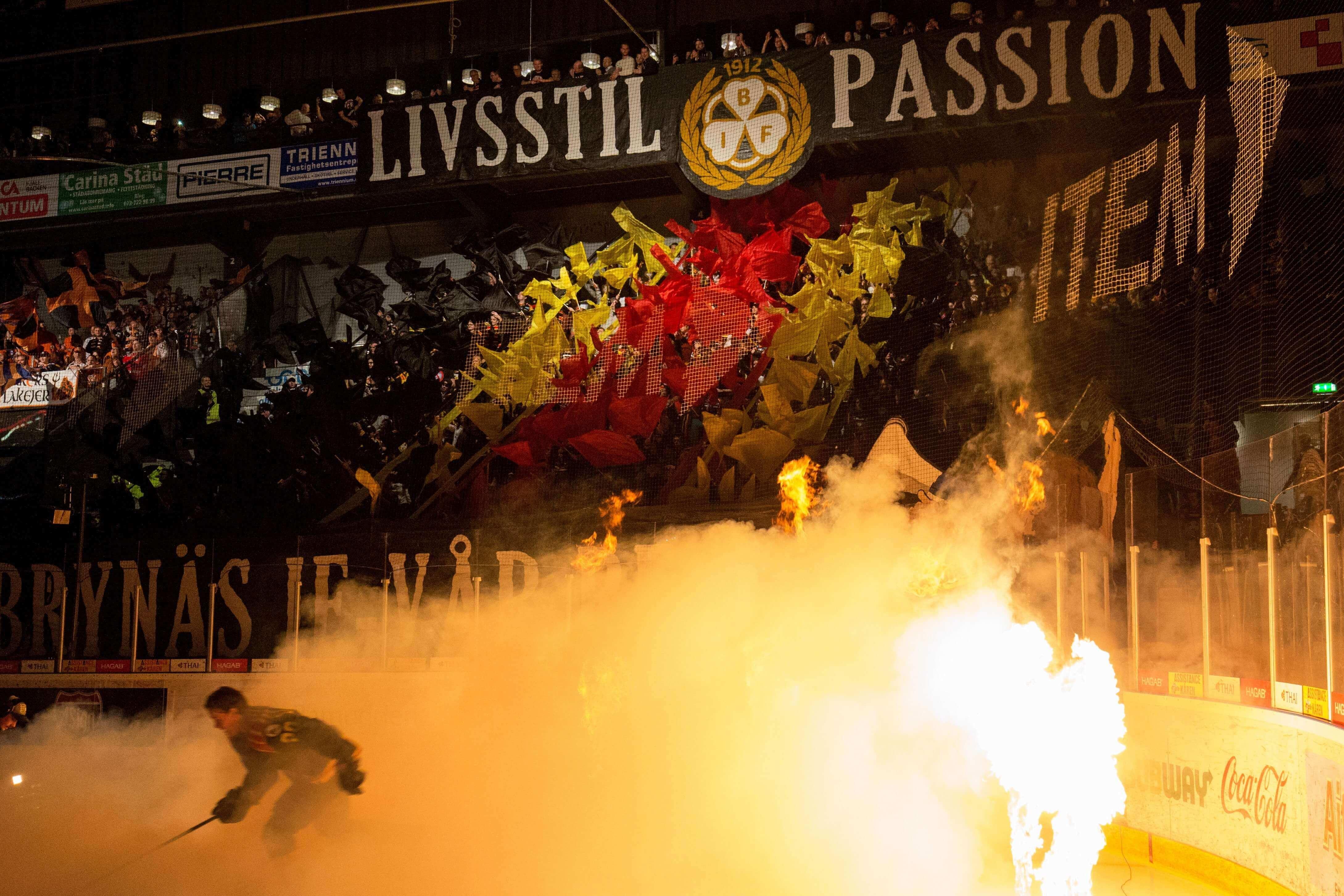 Brynäs Supporters