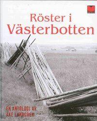 Bokcirkel på Malå bibliotek