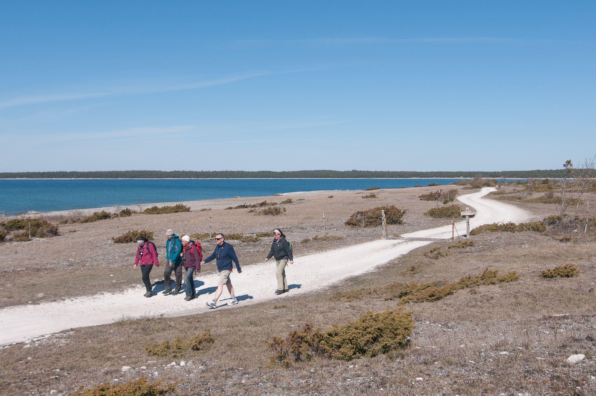 Gotland Hiking Week - Höst