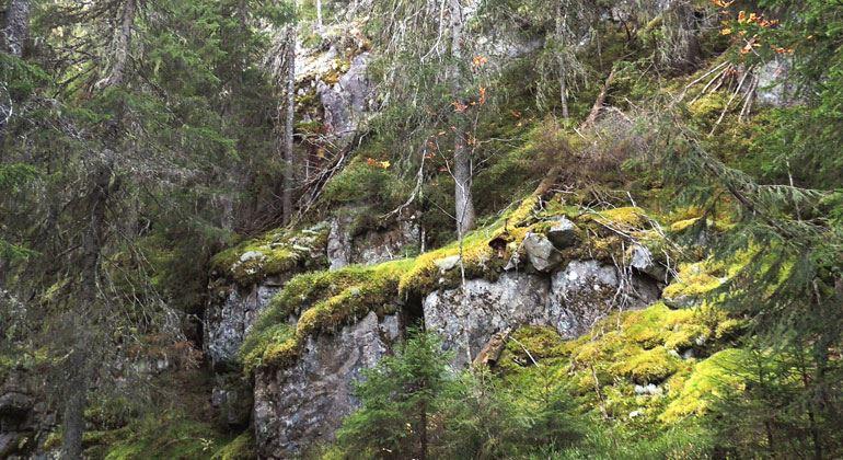 Himmelsberget