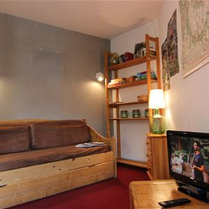 ARCELLE 201 / 2 ROOMS 4 PERSONS - 1 BRONZE SNOWFLAKE - VTI