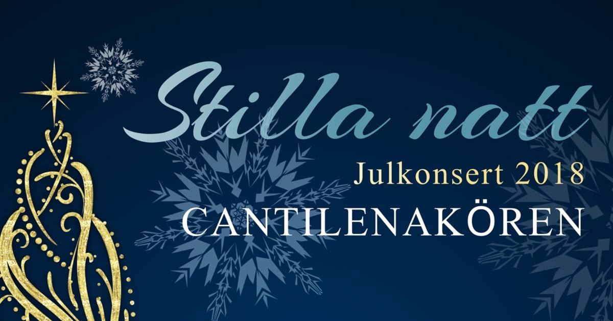 © Copy: https://www.facebook.com/cantilenaostersund, Christmas concert - Silent night with Cantilena choir