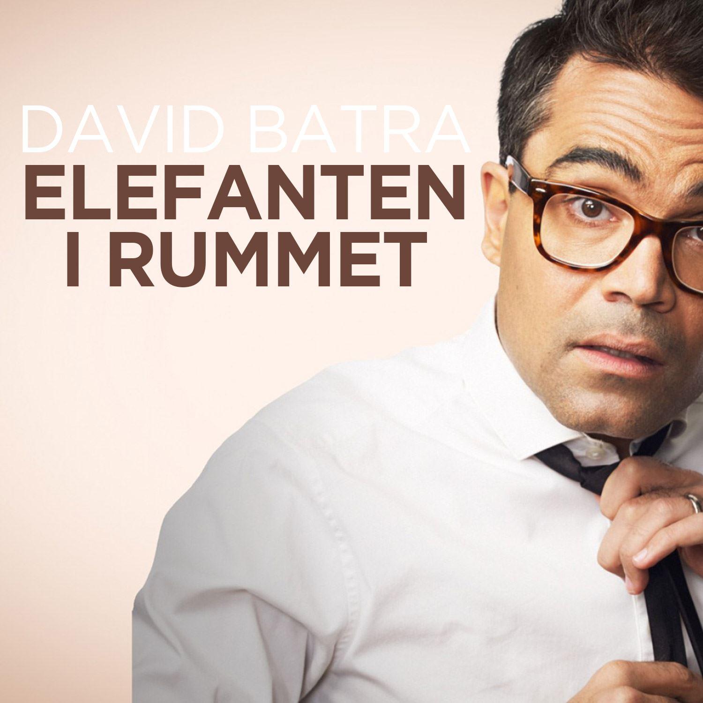 David Batra - En elefant i rummet - SLUTSÅLT
