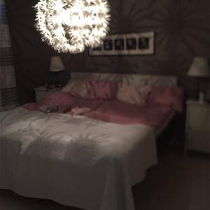 HL130 Apartment on Frösön
