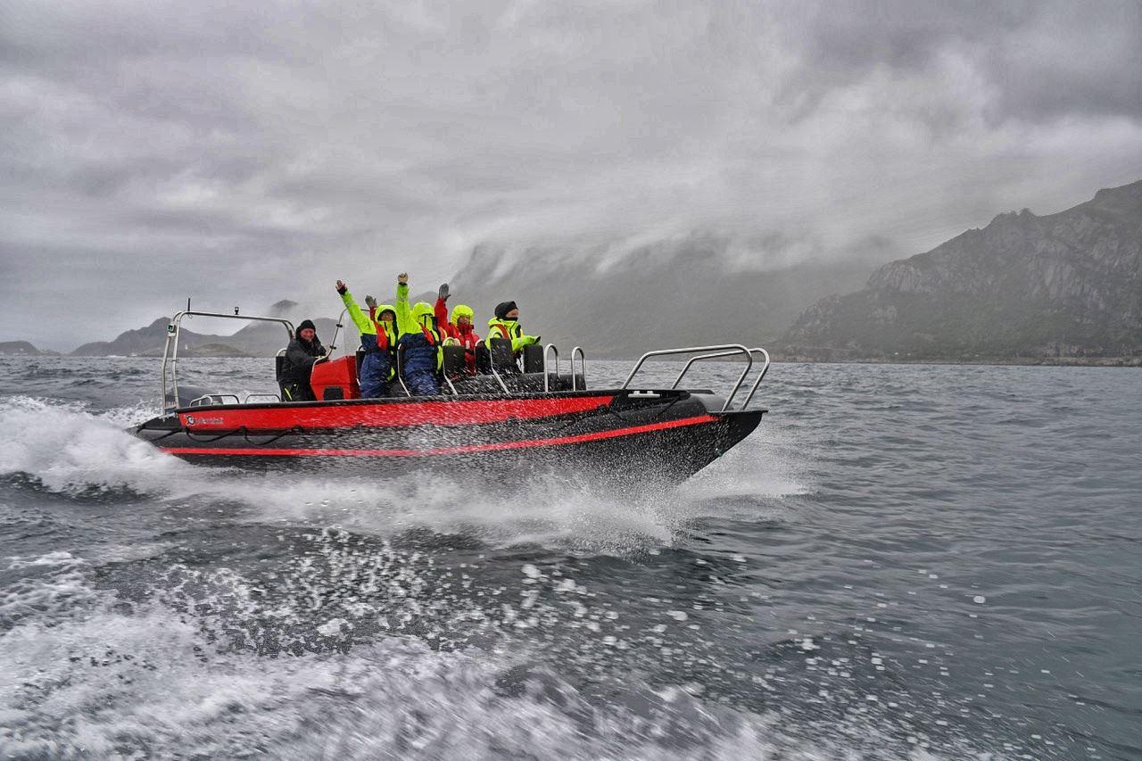Seasafari Øksnes,  © Seasafari Øksnes, Seasafari Øksnes - Vinteraktiviteter med RIB i Øksnes