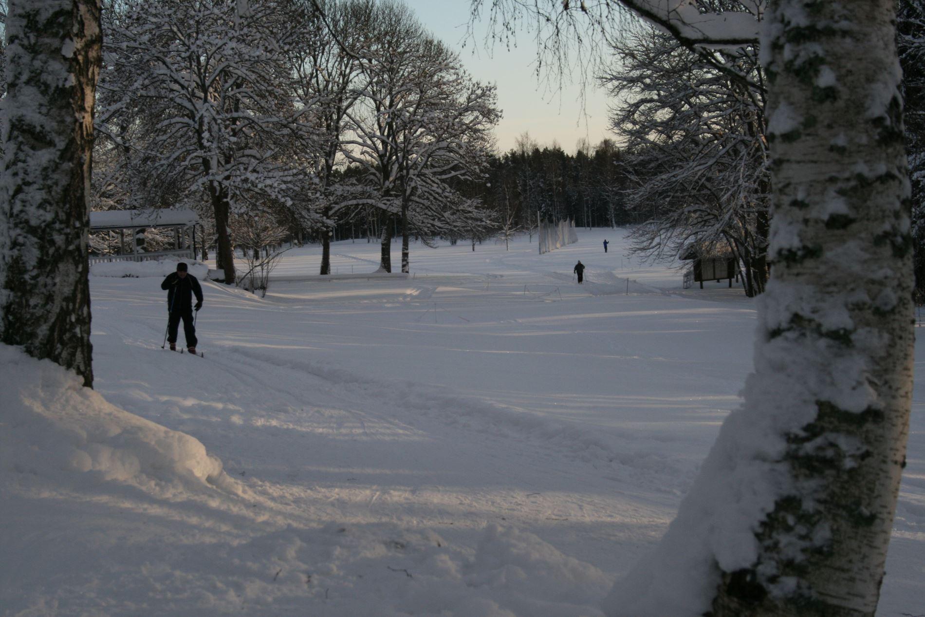 Foto: Avesta Turistbyrå, Åsbo, Dalahästen