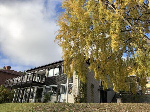HV149 House at Frösön