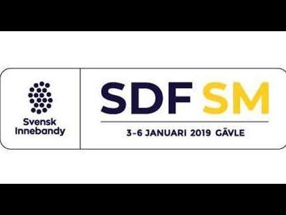 Distriktslags SM-2019
