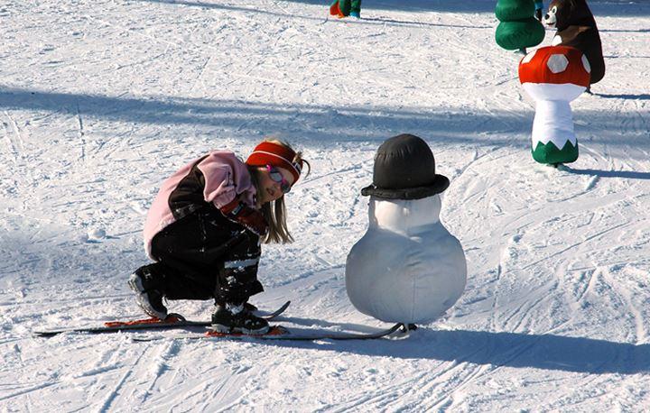 Isas skicross