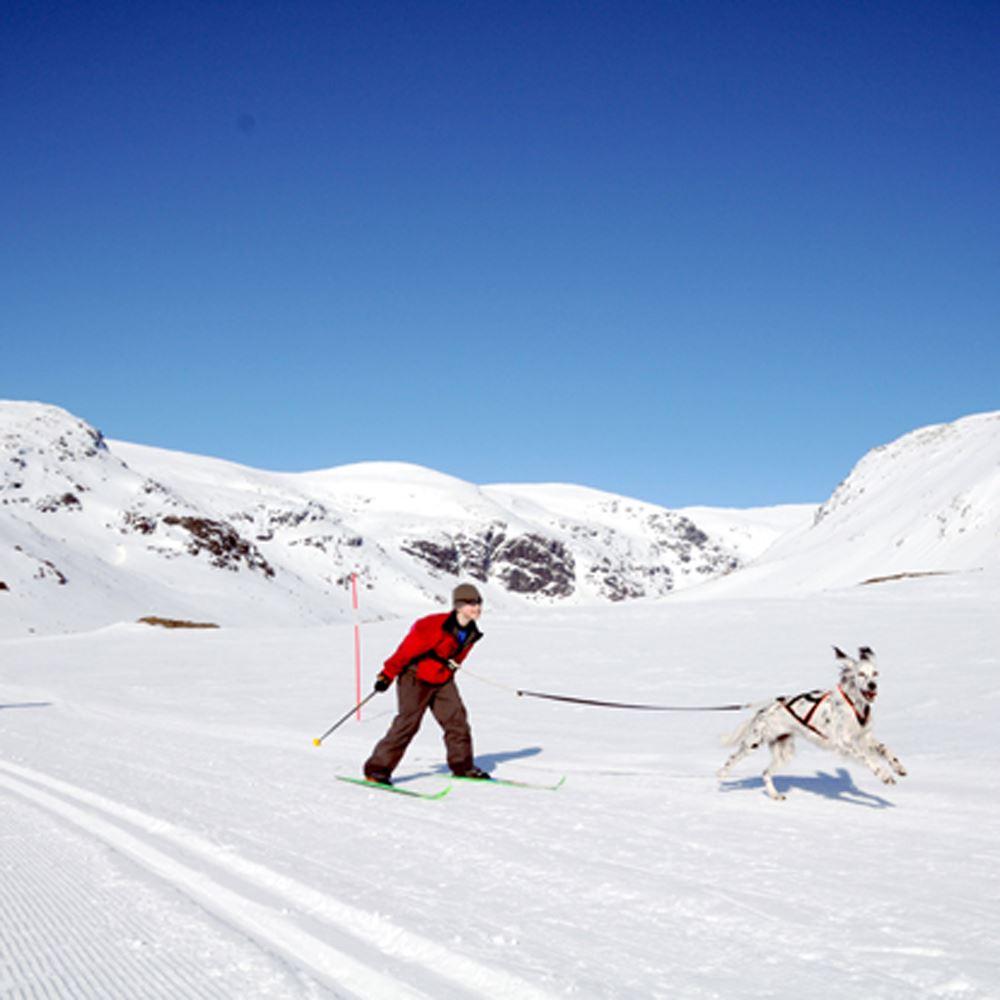 Sam Hedman,  © Hemavan Tärnaby PR-förening, Längdåkningsspår i Hemavan