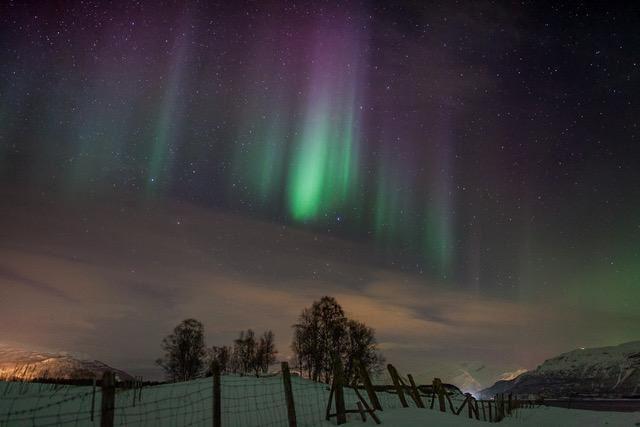 Lyngen Adventure,  © Lyngen Adventure, Aurora 101 – Nordlys jakt - Lyngen Adventure