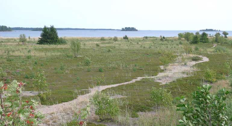Länsstyrelsen Gävleborg,  © Länsstyrelsen Gävleborg, Stenöorn Natural Preserve