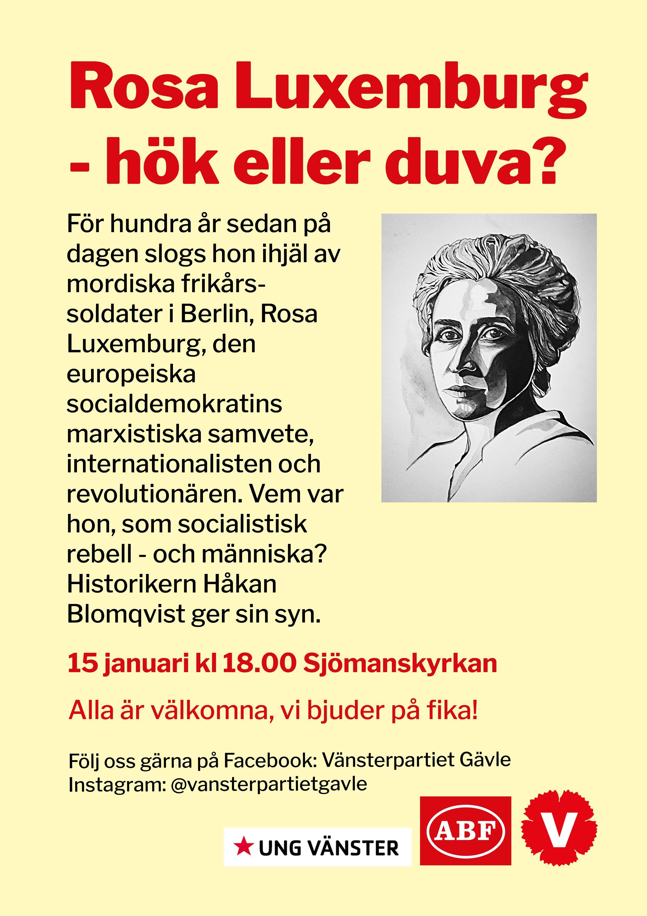 Rosa Luxemburg, hök eller duva?