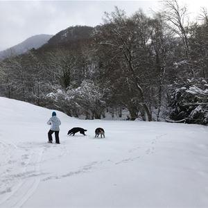 © CorineSaintPierre-ChaletFario, HPM12 - Chalet 3 personnes en vallée d'Aure