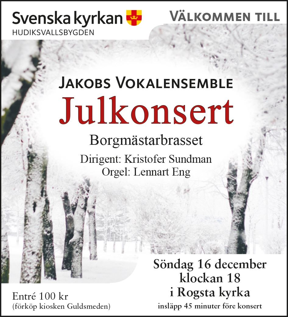 Julkonsert med Jakobs Vokalensemble i Rogsta kyrka