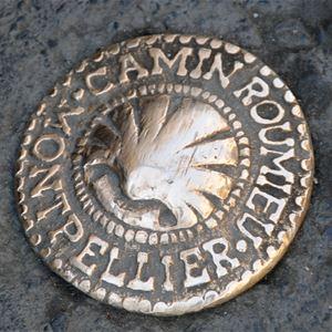 Montpelhièr l'Occitane (visita en francés)