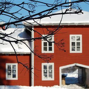 Julmys på Stenegård!