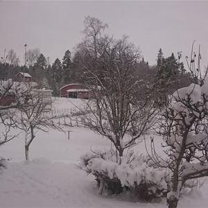 Foto: Sandvikens Camping,  © Copy: Sandvikens Camping, Sandvikens Camping & Stugby