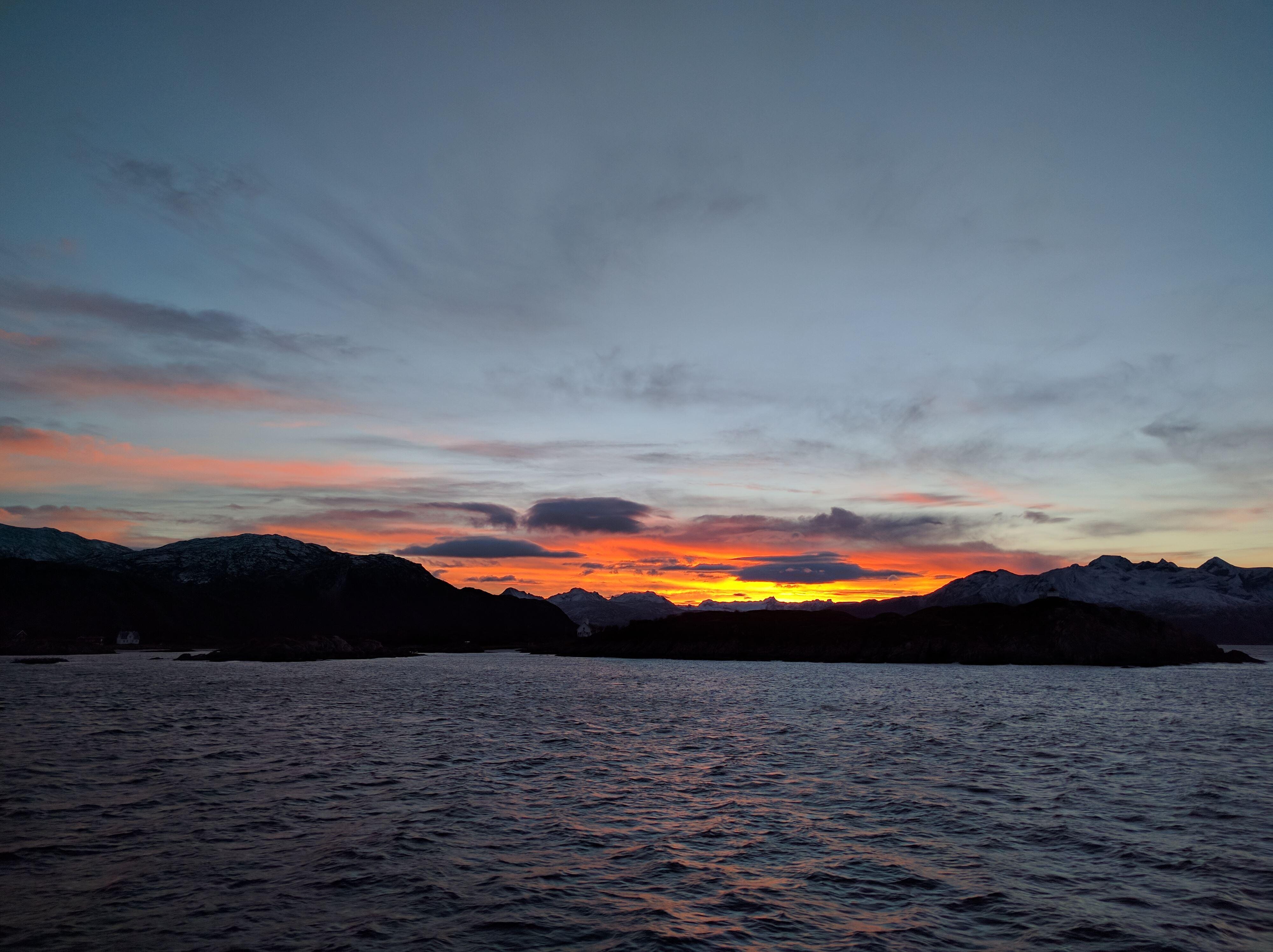 Arktisk Natur Cruise - Sørøya Havfiskecruise