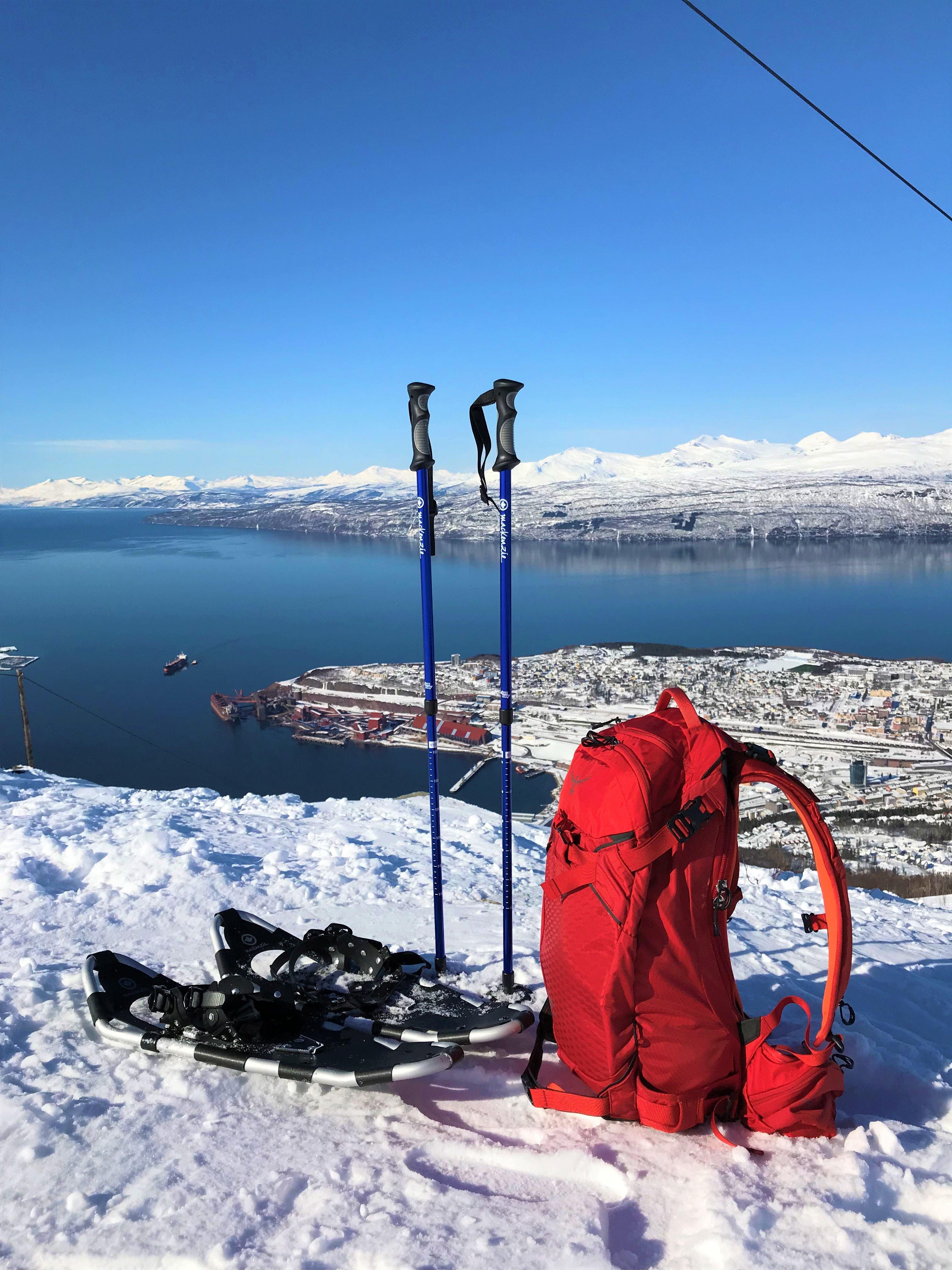 Trugetur i Narvikfjellet