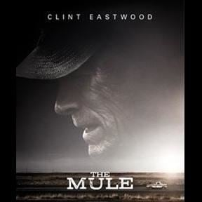 Bio - The Mule