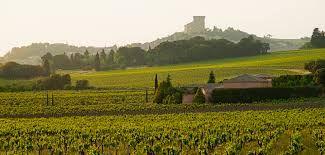 Croisière des Vignobles - OFFRE SPECIALE OFFICE DE TOURISME
