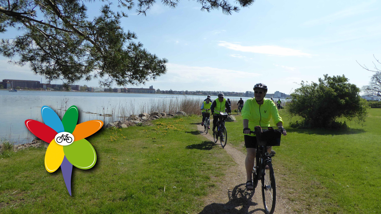 Naturskøn cykeltur rund om Guldborgsund - 44 km