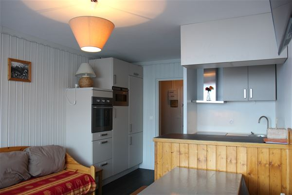 LAC DU LOU 409 / APARTMENT 4 ROOMS 10 PEOPLE - 3 SILVER SNOWFLAKES - CI