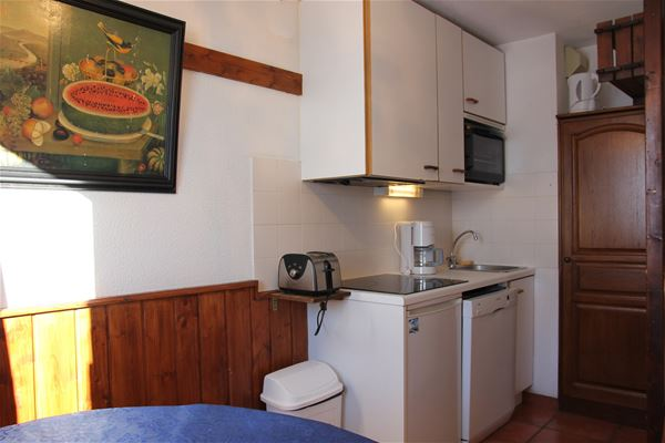 REINE BLANCHE 117 / APPARTMENT 4 ROOMS 6 PERSONS - 1 SILVER SNOWFLAKESCI