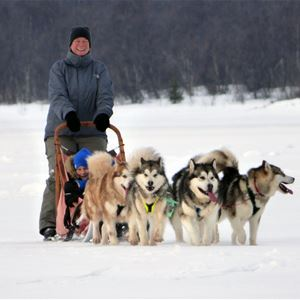 Kids' Dogsledding Fun