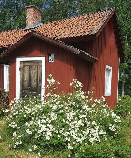 Lägenhet uthyres Undersvik Hälsingland