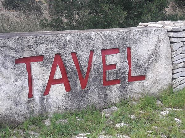 Wine Tour Tavel and Chateauneuf du Pape