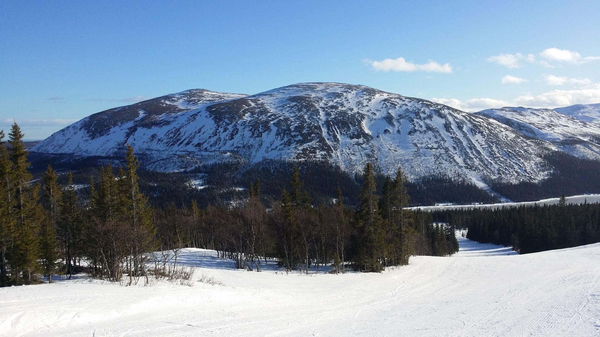 Cosy mountain cabin in Bydalsfjällen!