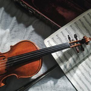 Spring & Vienna concert