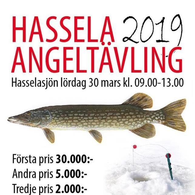 hassela angeltävling 2019, hasselasjön, fiske,  © hassela angeltävling 2019, hasselasjön, fiske, hassela angeltävling 2019, hasselasjön, fiske