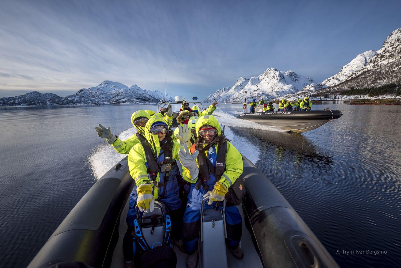 Trollfjord og havørnsafari